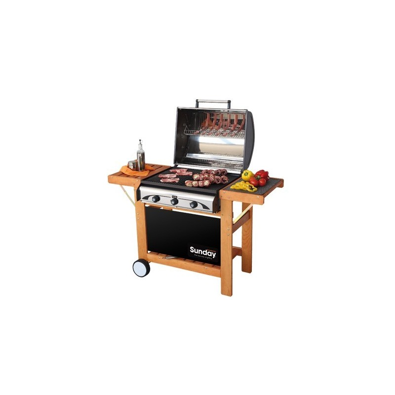 Grill Barbecue a Gas PROFY 3